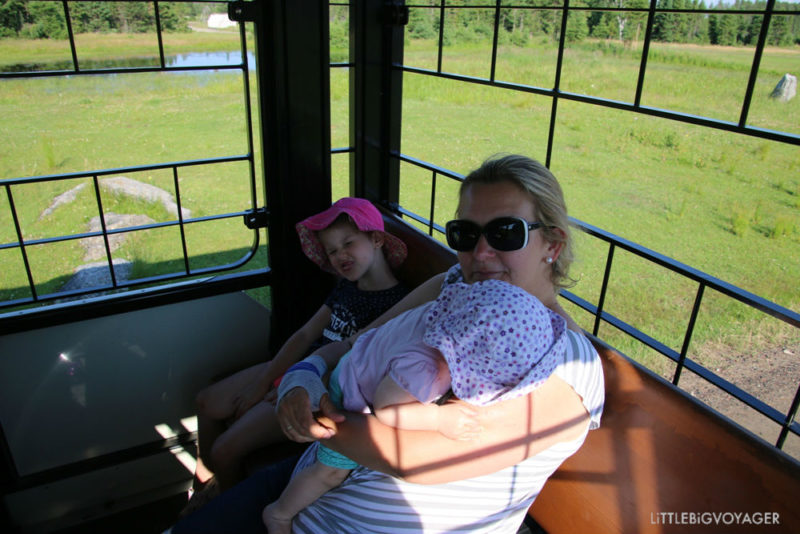 wir im Zoo Sauvage