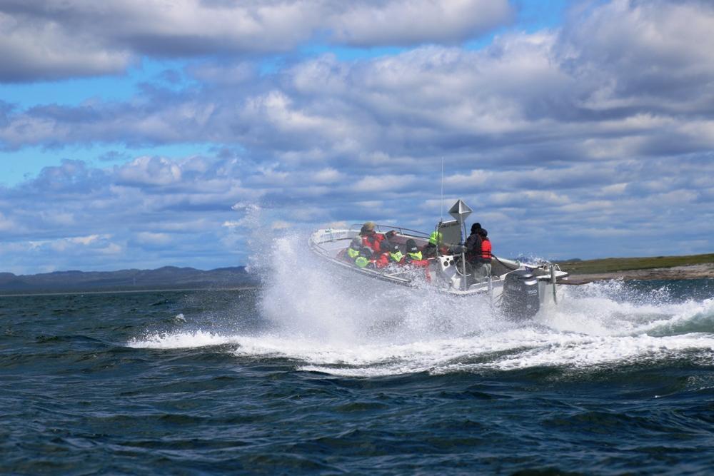 Motorboot in voller Fahrt
